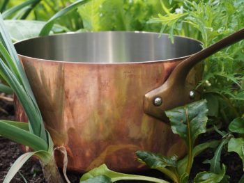 garden broth-copper soup pot in the garden
