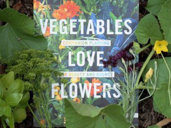 recommended summer reading Vegetables Love Flowers Lisa Mason Ziegler