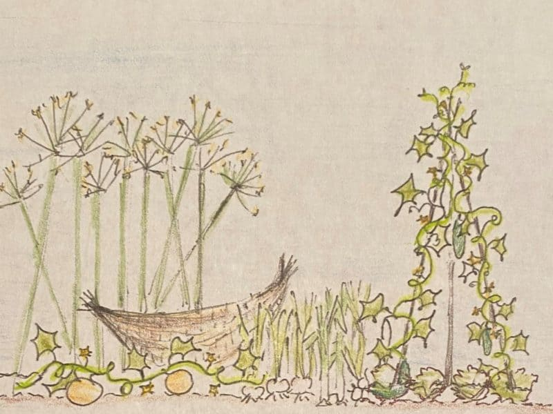 Moses murmuring vegetables, a sketch of plants in Moses leadership