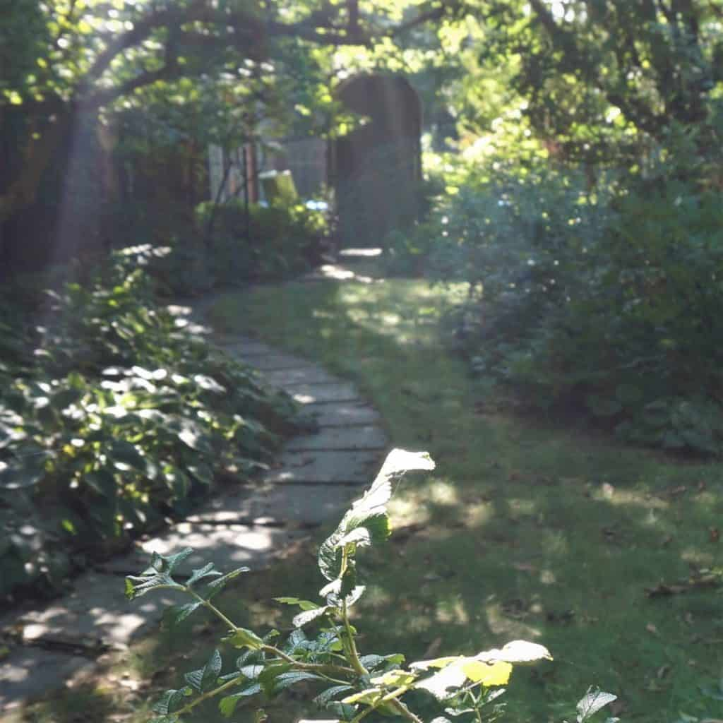 a shady path and garden gate for the Top 10 Gardening verses in the Bible
